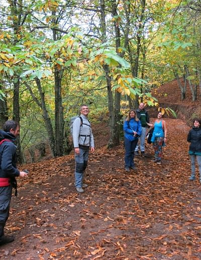 Excursion (Guided trekking) at the Copper forest near Ronda.