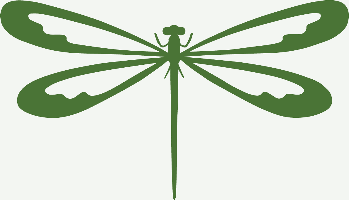 dragonflies of Andalusia